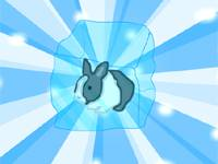 Bunny xmas edition
