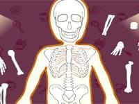 Nurse Bones