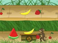 Łapacz owoców