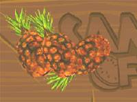Owoce Samuraja