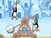 Pingwinia katapulta
