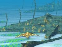 Nurkowanie pod wodą