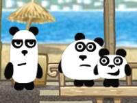 Pandy w Brazylii