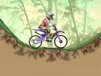 Dirtbike Championship
